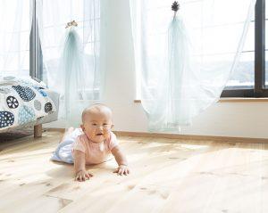 インフルエンザ菌 不活性化 子供部屋 無垢フローリング
